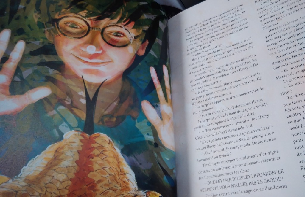 Harry Potter illustré par Jim Kay - Mersssssssi !