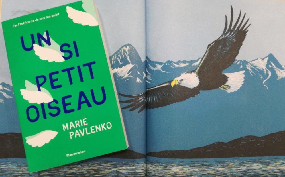UN SI PETIT OISEAU, Marie Pavlenko, éditions Flammarion