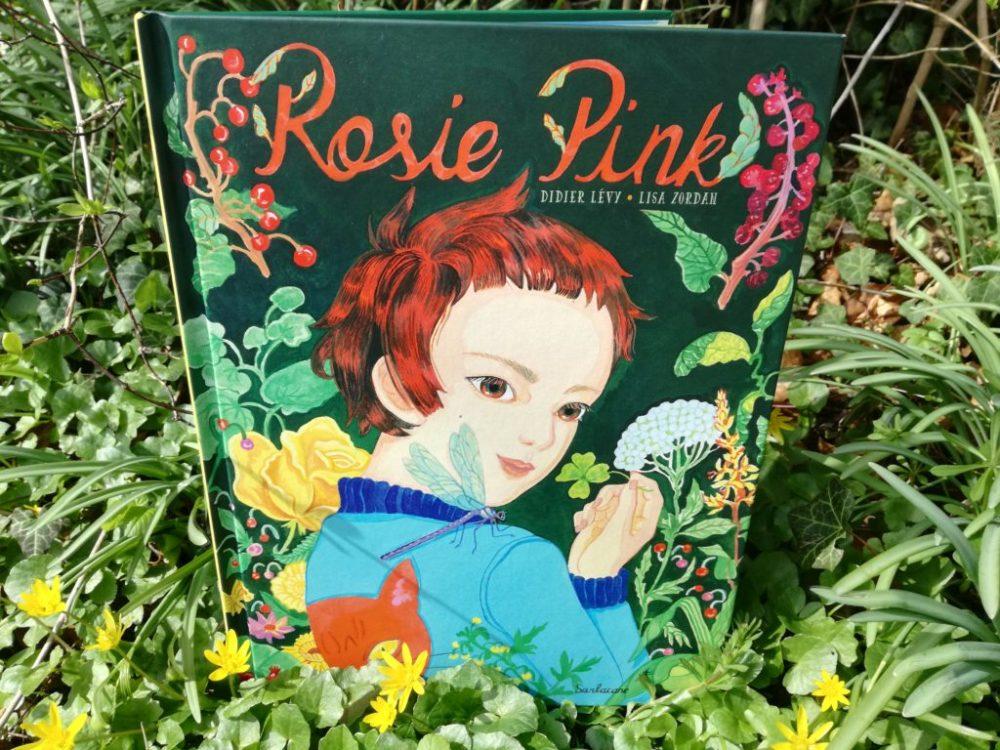 ROSIE PINK, Didier Levy & Lisa Zordan, éditions Sarbacane