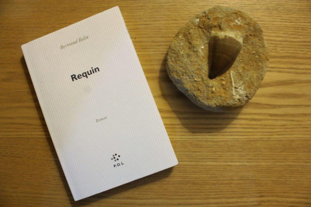 REQUIN, Bertrand Belin, éditions P.O.L.