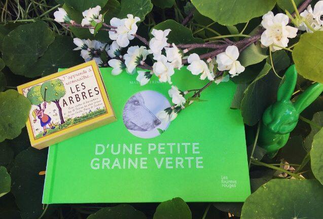 D'UNE PETITE GRAINE VERTE, Mathias Friman, éditions Les Fourmis rouges
