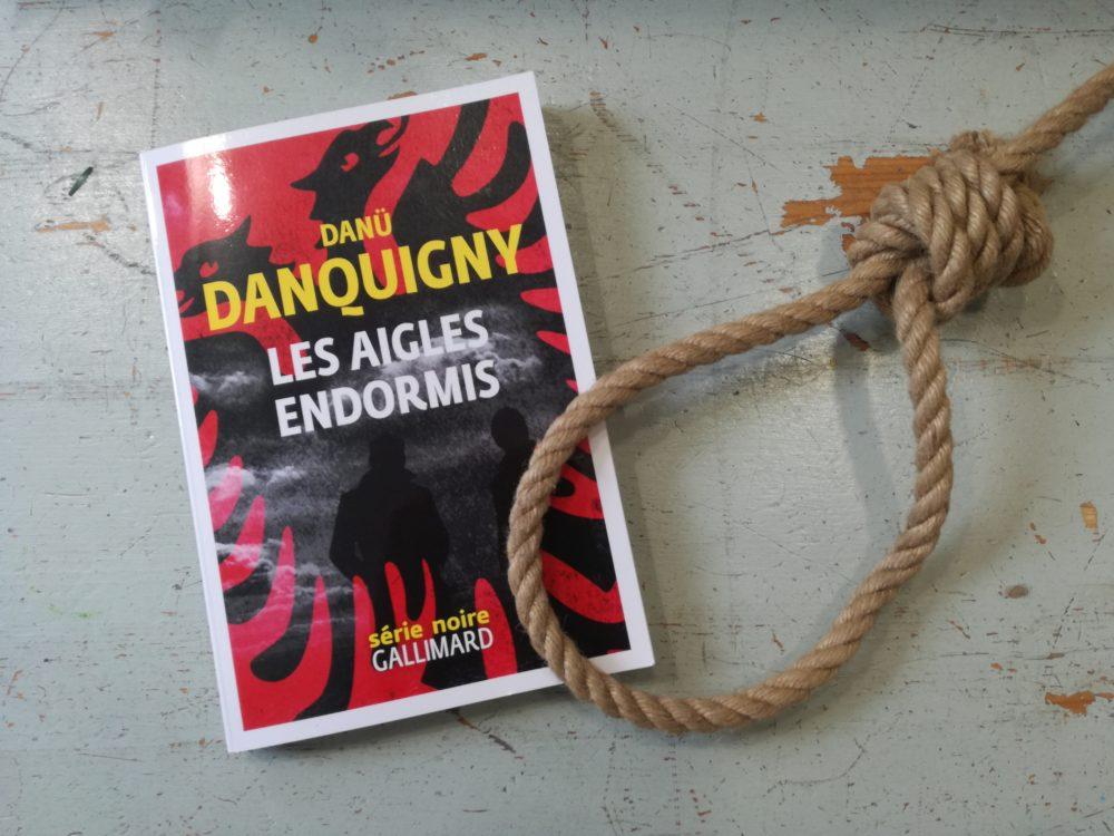LES AIGLES ENDORMIS, Danü Danquigny, éditions Gallimard