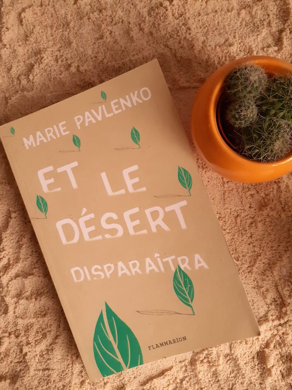 ET LE DÉSERT DISPARAÎTRA, Marie Pavlenko, éditions Flammarion