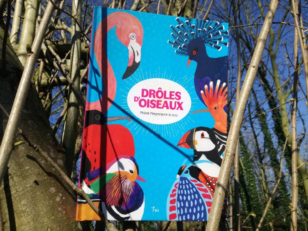 DRÔLES D'OISEAUX, Misha Maynerick Blaise, Éditions FEI